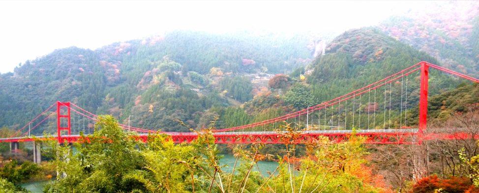 【秋の四国カルストをドライブ】強風がふく天空の道と絶景