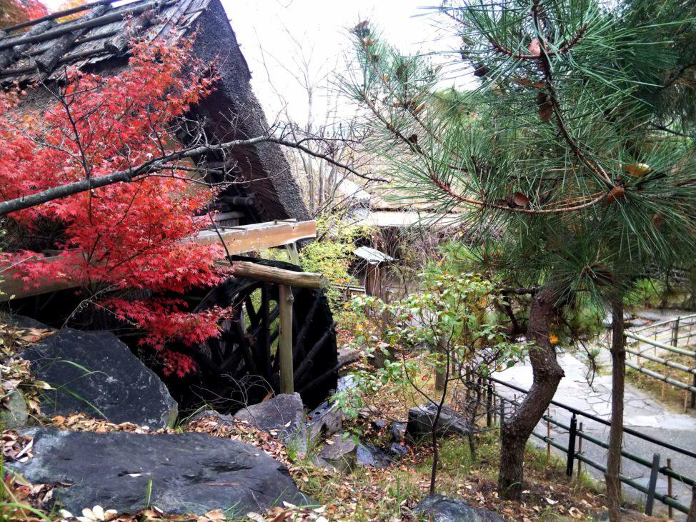【わら家のざいごうどん】水車小屋がある古民家の有名店「香川県高松市」