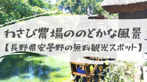 【大王わさび農場は超穴場】安曇野市の無料観光スポットで絶景とわさびグルメを堪能長野県安曇野にある無料観光スポット