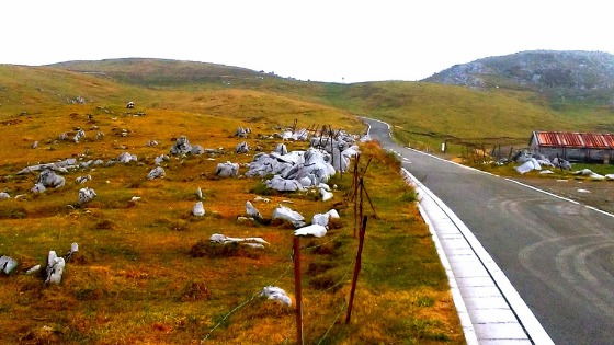 【四国カルストを天空ドライブ】車中泊の旅で訪れた天空エリアと強風がふく絶景:まとめ
