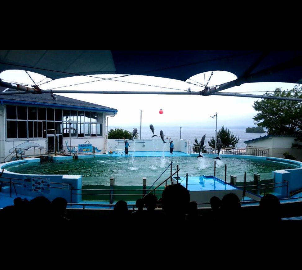 のとじま水族館 【能登半島一周・車中泊ドライブ旅】2泊3日でまわった21のおすすめ観光スポット